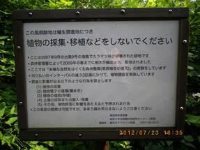 説明: 説明: C:\Users\imashiro\Pictures\2012-08-13\046.JPG